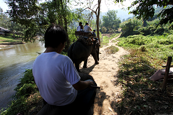 Elephant ride at the Maesa Elephant Camp