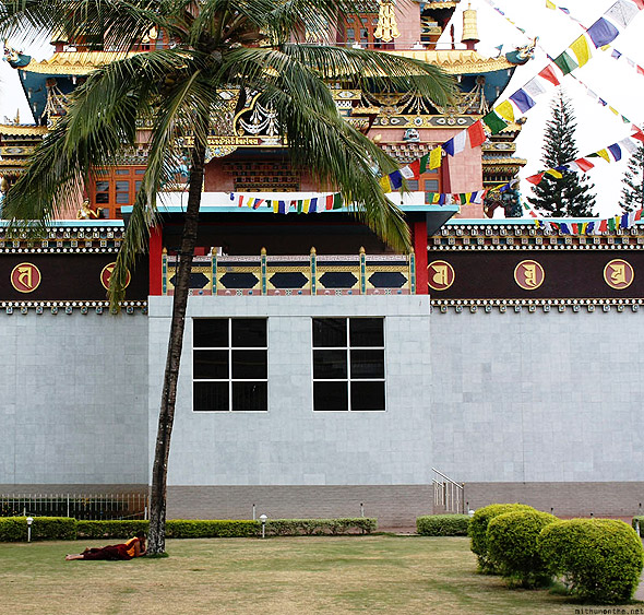 Bylakuppe temple Buddhist tree