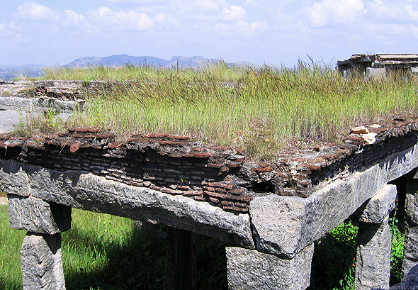 Gingee fort structure grass