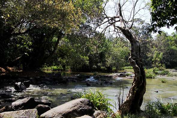 Kuruva islands river stream