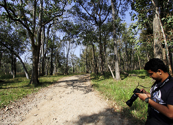 Muthanga forest safari trail