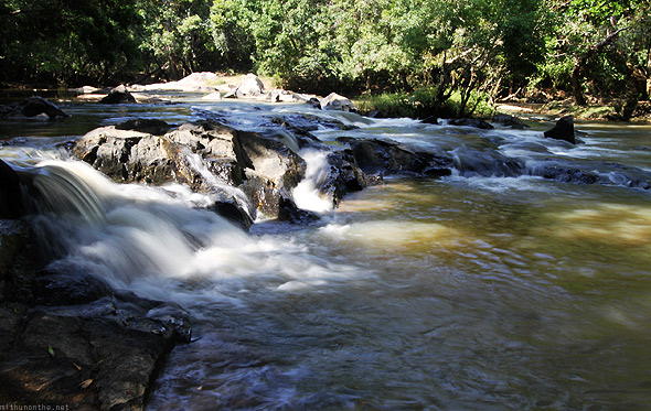 Wayanad forest stream