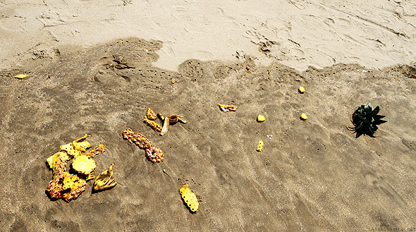 Kudle beach pineapple pieces