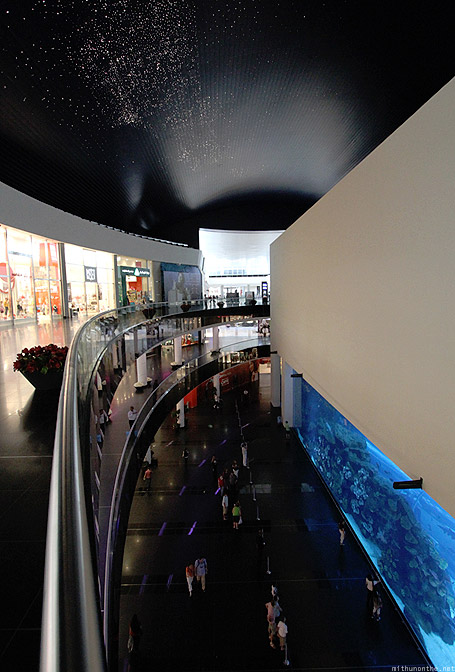 Dubai Mall Aquarium from top