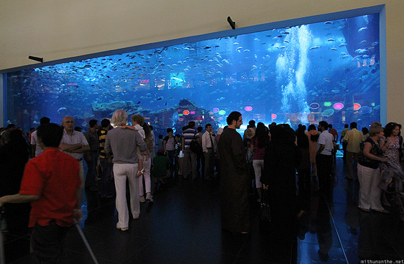 Dubai Aquarium from outside Dubai mall crowds