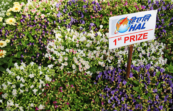 Bangalore Lal Bagh flower show HAL first prize