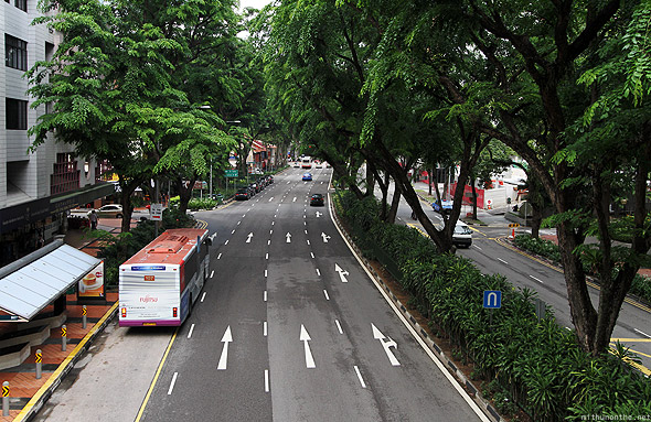 Singapore Beach road bus