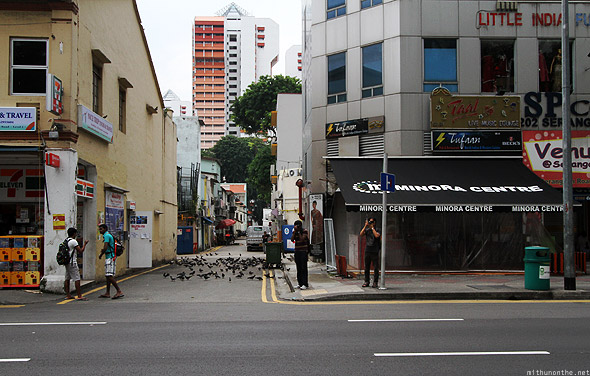 Singapore Little India pigeons alley