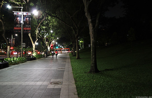 Singapore Orchard road green grass trees