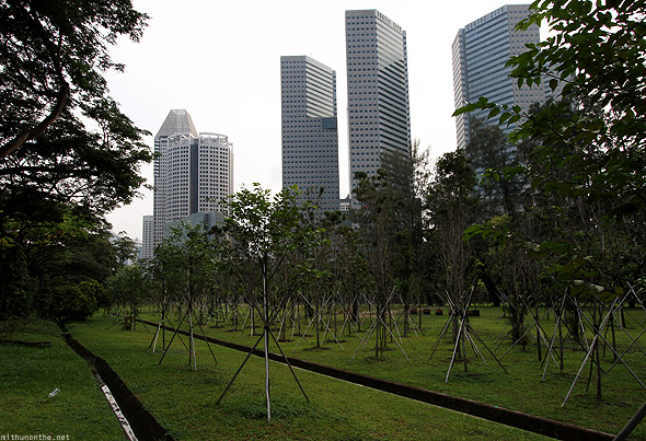 Singapore Suntec city park trees