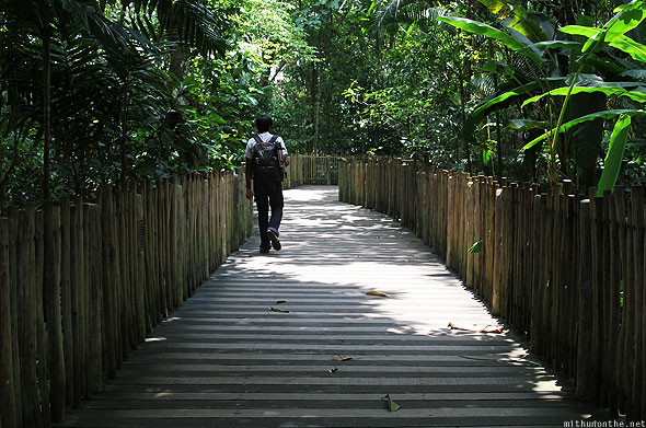 Singapore zoo bamboo path Ramesh