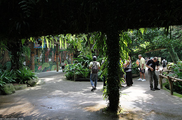 Singapore zoo entrance leaves green