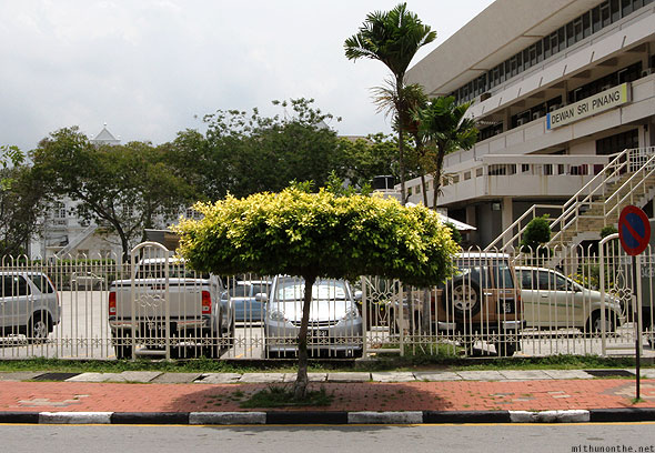 Penang car parking tree plant shade