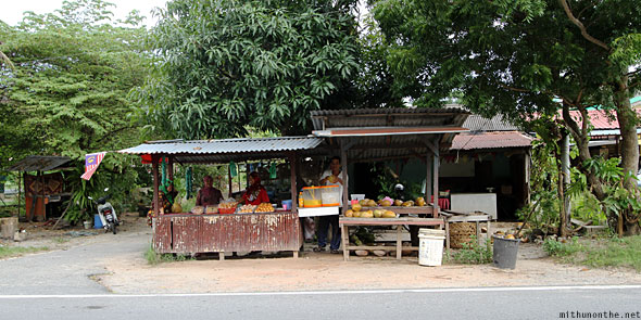Way to Langkawi cable car fruit stall