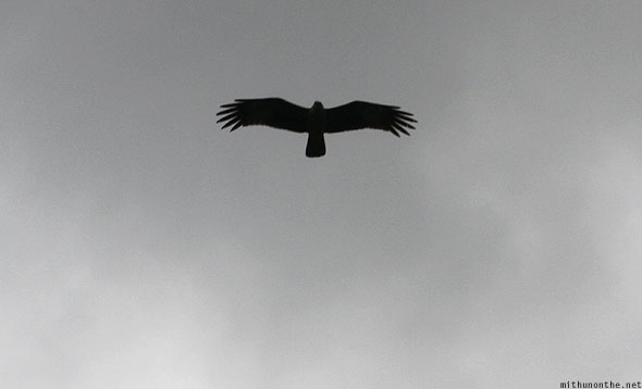 Langkawi eagles grey sky