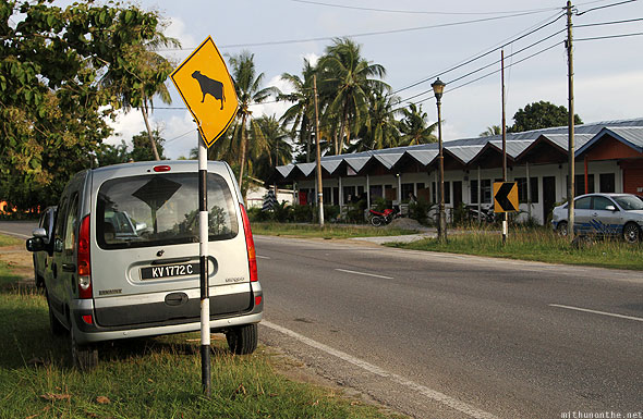 Langkawi road cow sign