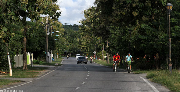 Langkawi road tourist cyclists