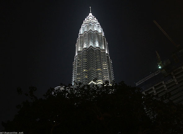 Petronas Tower single tree shadow night