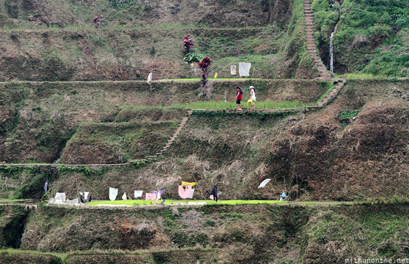 Banaue rice terrace farmers Philippines