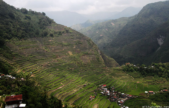 Batad village rice terraces Banaue Philippines