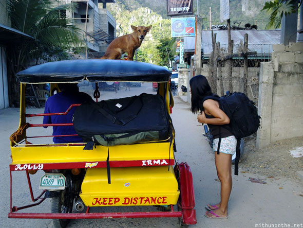Leaving El Nido dog on trike