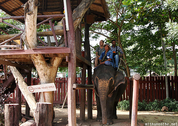 Elephant village ride tourists Thailand