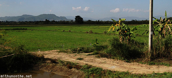 Farm land Chiang Rai outskirts