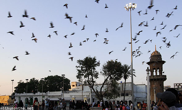 Mecca Masjid pigeons flying evening Hyderabad