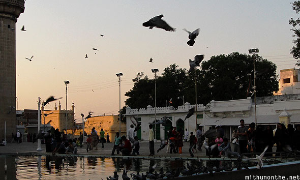 Mecca Masjid pigeons Hyderabad mosque