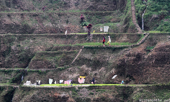 Banaue rice terrace farm levels locals steps
