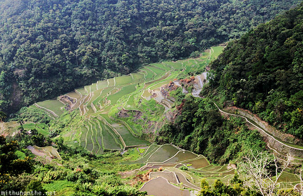 Banaue rice terrace Ifugao province Philippines