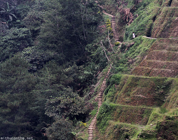 Banaue rice terrace long steps