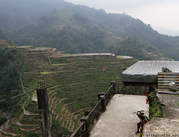 Banaue rice terrace tribals at shop main viewpoint