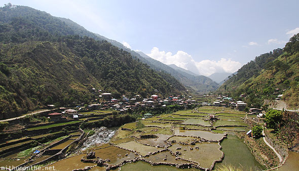 Banaue to Bontoc rice terrace village