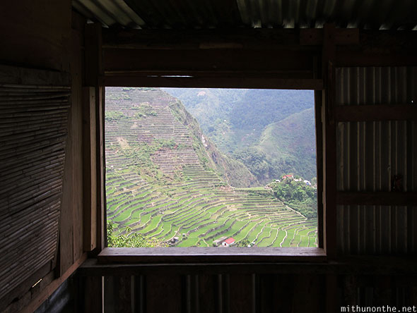 Batad rice terrace view window