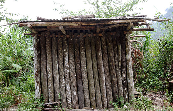 Batad tree wood shed Banaue