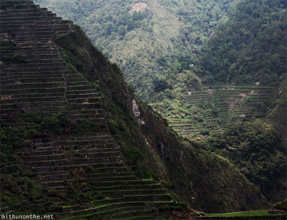 Batad village rice terrace steps Philippines panorama
