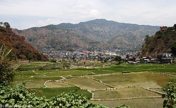 Bontoc town rice paddy field