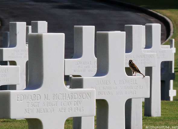 Manila American cemetery memorial sparrow on cross