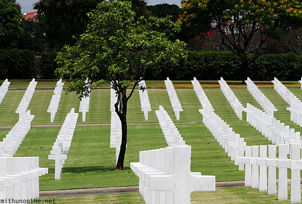 Manila American War Cemetery War memorial tree among graves