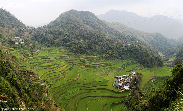 Rice terrace near Batad panorama