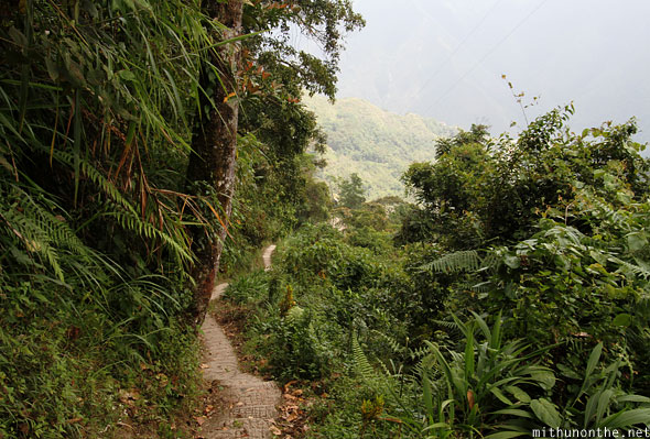 Steps down to Batad village Banaue Ifugao