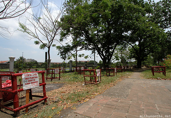 Plant trees outside Intramuros golf club Manila Philippines
