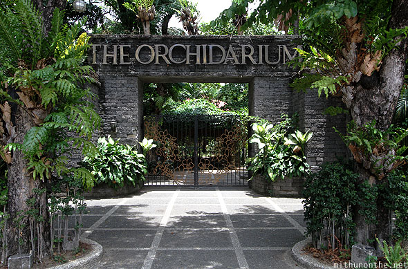 The Orchidarium Manila Philippines