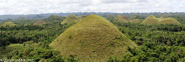Chocolate Hills Bohol closeup panorama