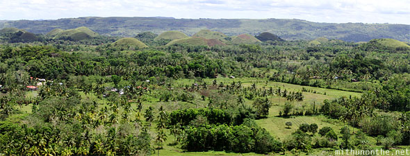 Chocolate Hills Bohol field Philippines panorama