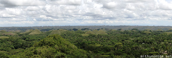 Chocolate hills Bohol Philippines wide panorama