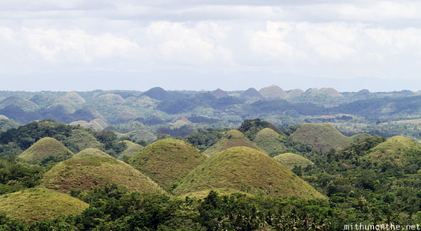 Chocolate hills mound karst Bohol Philippines