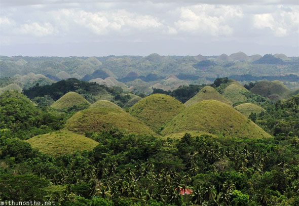 Chocolate Hills round Bohol closeup panorama