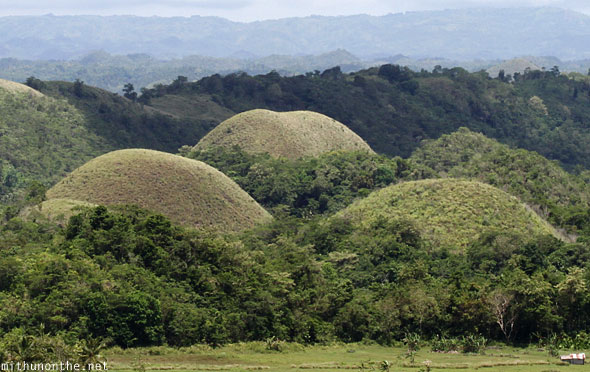 Chocolate Hills three mounds Bohol Philippines